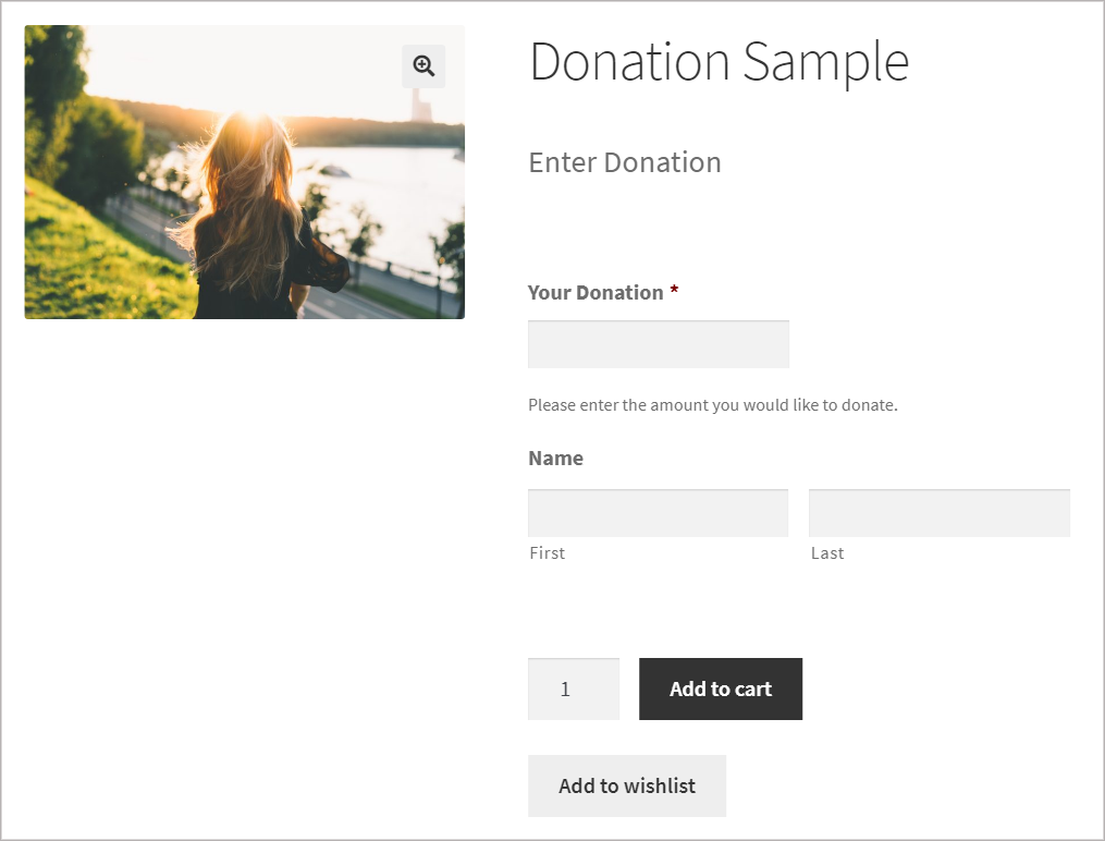 A product page called for donations with a Gravity Forms form with fields for the donation amount and name